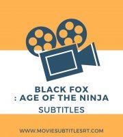 Black fox:age of the ninja